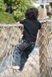 Weinig jongen het beklimmen Stock Afbeeldingen