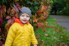 Weinig jongen in het de herfstpark royalty-vrije stock foto's