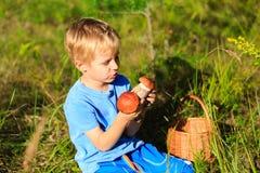 Weinig jongen het plukken schiet in groen bos als paddestoelen uit de grond Royalty-vrije Stock Fotografie