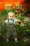 Weinig jongen het snuiven bloemen stock afbeeldingen