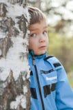 Weinig jongen kijkt uit berk, daling, park Royalty-vrije Stock Afbeelding
