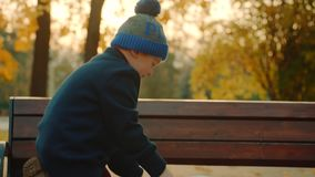 Weinig jongen let op groot familiealbum in het de herfstpark en verlaat het dan stock video