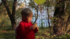 Weinig jongen met ballonappel in park bij de herfst stock videobeelden