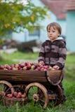 Weinig jongen, met een karretjehoogtepunt van appelen Stock Afbeeldingen