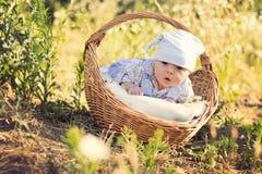 Weinig jongen met een mand Stock Foto's
