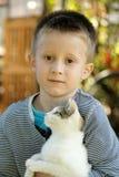 Weinig jongen met kat Stock Afbeelding