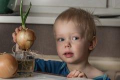 Weinig jongen met twee bollen van verse uien Stock Foto