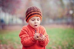 Weinig jongen met vlieger in het park Stock Afbeelding
