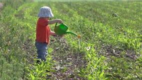 Weinig jongen met water bestrooit behandelt de groene installaties irrigeert bloem stock video
