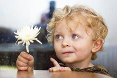 Weinig jongen met witte bloem Royalty-vrije Stock Afbeelding