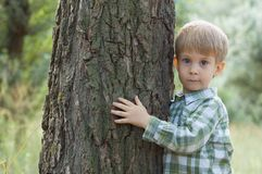 Weinig jongen omhelst een boom Royalty-vrije Stock Fotografie