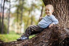 Weinig jongen op de boom Stock Foto