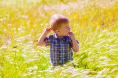 Weinig jongen op de zomergebied Stock Foto