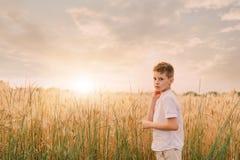 Weinig jongen op een tarwegebied Stock Fotografie