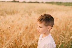 Weinig jongen op een tarwegebied Royalty-vrije Stock Foto's