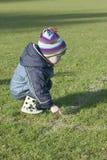 Weinig jongen op het gras Stock Foto