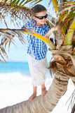 Weinig jongen op palm stock fotografie