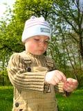 Weinig jongen in park Stock Foto's