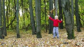 Weinig jongen in rood werpt gele droge bladeren in de herfstpark stock video