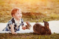Weinig jongen speelt met een konijn in het park stock afbeelding