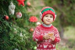 Weinig jongen in sweater en hoed die op Kerstmis in het hout wachten Stock Afbeeldingen
