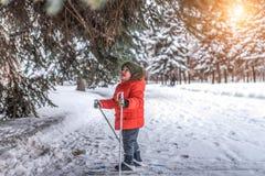 Weinig jongen van 3 jaar oud, van de de achtergrondsneeuw van de de winterstad de groene sparren, berijdt kinderenskis Concepten  royalty-vrije stock foto