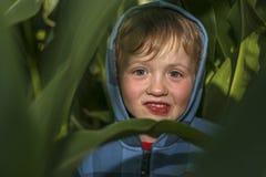 Weinig jongen verbergt op het graangebied stock fotografie