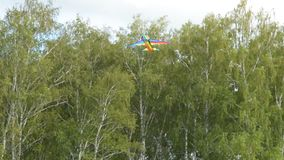 Weinig jongens vliegende vlieger in het hout stock videobeelden