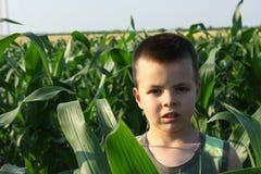 Weinig jongensportret Stock Fotografie