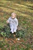 Weinig jongenszitting in het park in de herfst royalty-vrije stock afbeelding