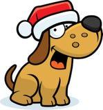 Weinig Kerstmis van de Hond Royalty-vrije Stock Fotografie