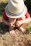 Weinig kind die groene erwten houden royalty-vrije stock afbeelding