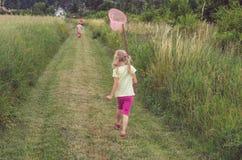 Weinig kind die vlinders vangen stock afbeelding