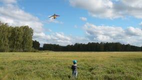 Weinig kind vliegende vlieger in het hout stock video