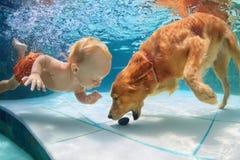 Weinig kind zwemt onderwater en speelt met hond Stock Afbeelding