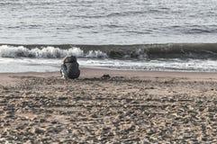Weinig kindzitting dichtbij de kust stock foto's