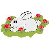 Weinig konijn op het gazon Stock Foto's