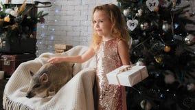 Weinig leuk meisje bevindt zich met een gift en strijkt het symbool van het nieuwe jaar - varken in langzame motie stock footage
