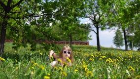 Weinig leuk meisje die met paardebloemen op een de lente zonnige dag spelen stock videobeelden