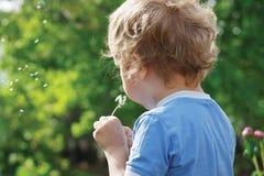 Weinig leuke jongen blaast een paardebloem Stock Foto