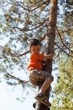 Weinig leuke jongen die op boomhoogte beklimmen royalty-vrije stock afbeelding
