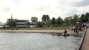 Weinig Meermin - Kopenhagen stock video