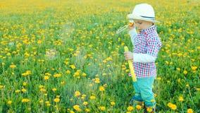 Weinig mooie jongen blaast bellen bij bloeiend gebied stock videobeelden
