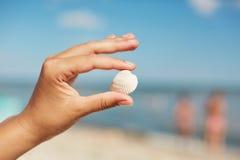 Weinig mooie overzeese shell in vrouwen` s handen tegen mooie mariene achtergrond Vrouw die vakantie op strand hebben, die wonde  Royalty-vrije Stock Fotografie