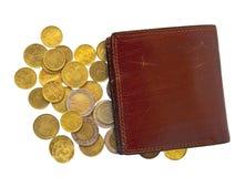 Weinig muntstukken en portefeuille Stock Afbeelding