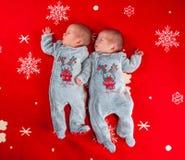 Weinig pasgeboren babyjongens, tweelingbroers Stock Foto