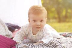 Weinig pasgeboren de jongensjong geitje van de zuigelingsbaby op een plaid in park De zomer Su royalty-vrije stock fotografie