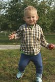 Weinig peuterjongen die en rode appelen in boomgaard plukken eten royalty-vrije stock afbeelding