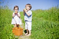 Weinig picknick royalty-vrije stock afbeeldingen