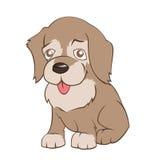 Weinig puppy Stock Foto